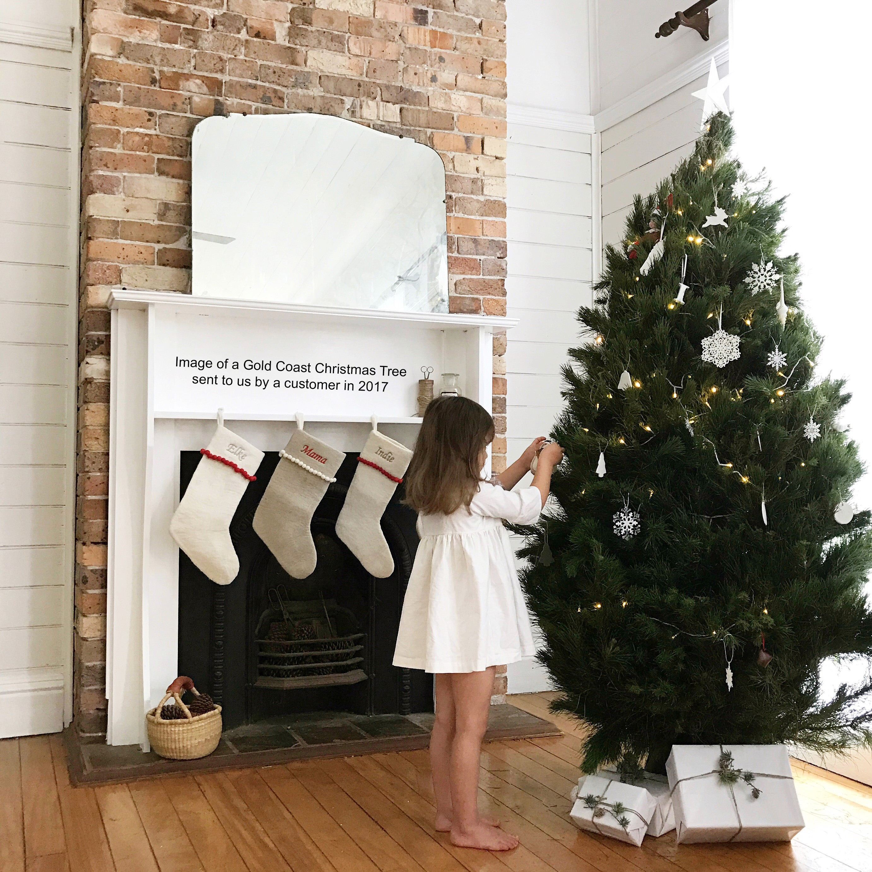 Standard Christmas Tree Gold Coast Christmas Trees